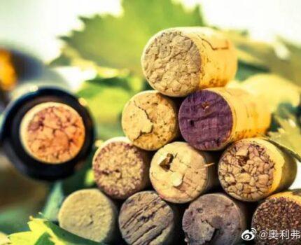 葡萄酒酒塞材质到底哪种好呢?
