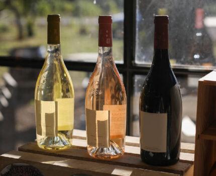 为什么葡萄酒要避光储存?