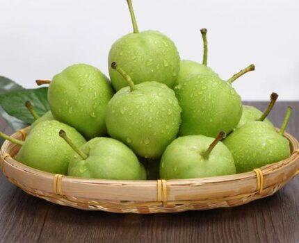 我的后园:秋季吃哪些水果,对胎儿好?