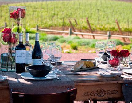 人类和葡萄酒有哪些不解之缘?