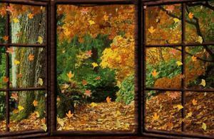 秋季锻炼好时节,掌握这几点很有必要