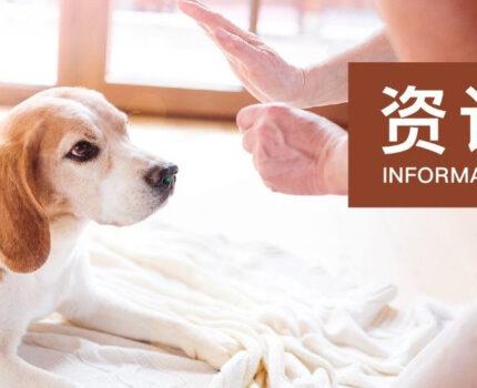 环球资讯 | 宠物行业体验式零售的创新成果