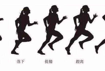 去除内脏脂肪,跑步是不是最好的方法?